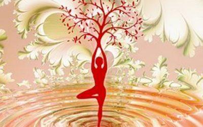 Yoga 6 maanden